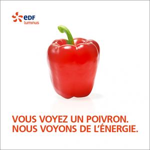 Campagne EDF Luminus par l agence secrète